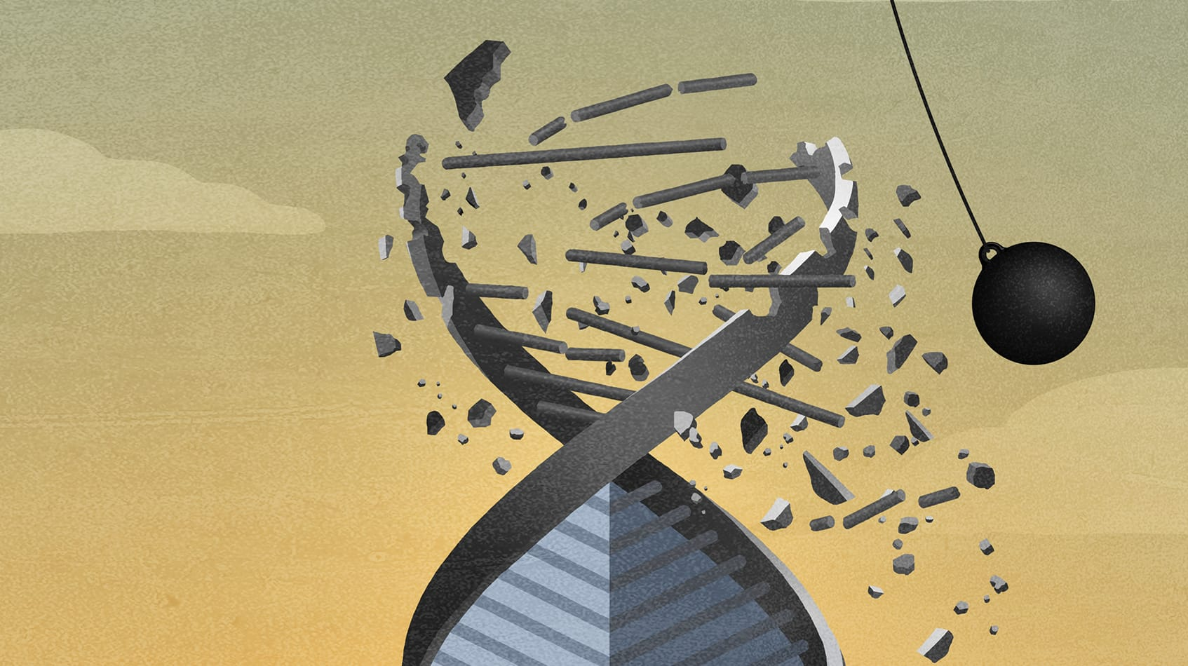 There's No Such Thing as Corporate DNA